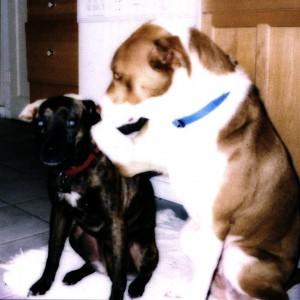 Bosco and Lola